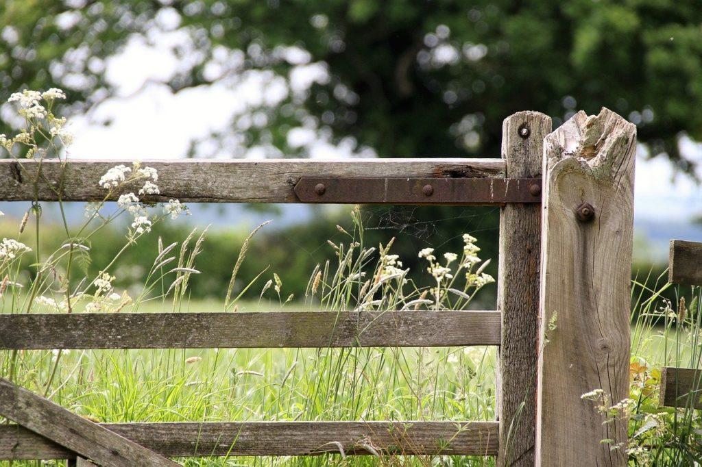 https://pixabay.com/it/photos/cancello-della-fattoria-campagna-1591383/